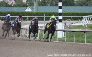 Horse Racing Track Surfaces - Dirt