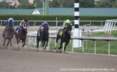 What are the different types of horse racing tracks Dirt