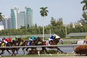 Horse Racing Track Surfaces - Turf