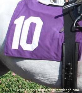 What are the different colors Horse Racing Saddle cloth numbers