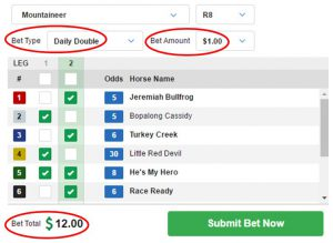 Daily Double Wager