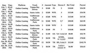 Horse Racing Betting Results