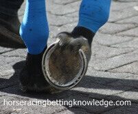 Thoroughbred Racing Horseshoes