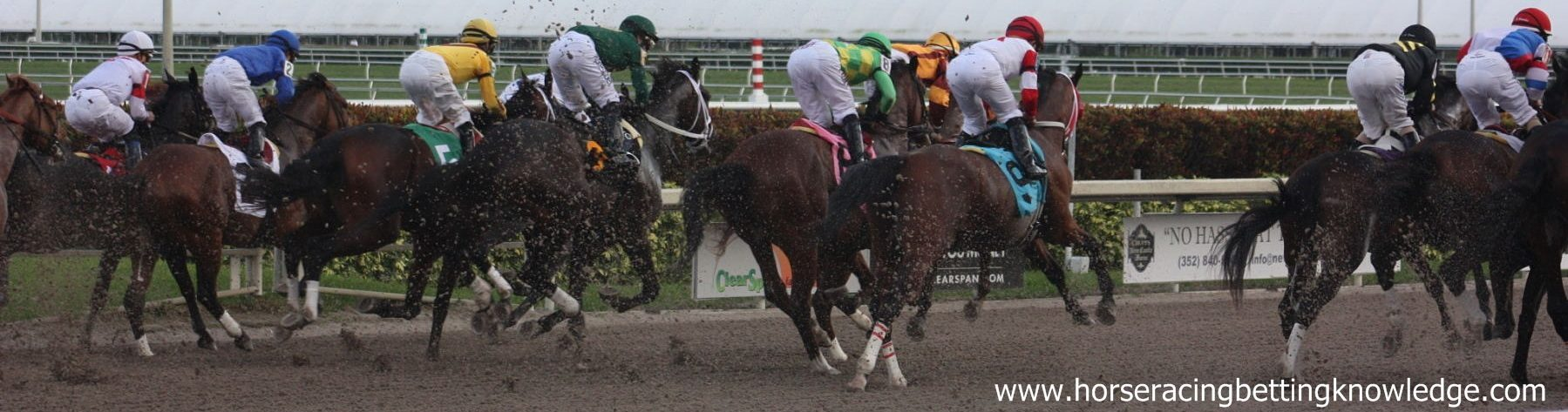 Horse Racing Betting Knowledge