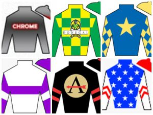 Pegasus Jockey Silks