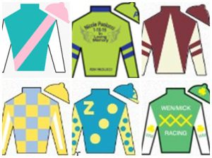 Pegasus World Cup Silks