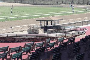 Horse Racing Winner Circle