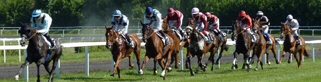 Horse races this weekend