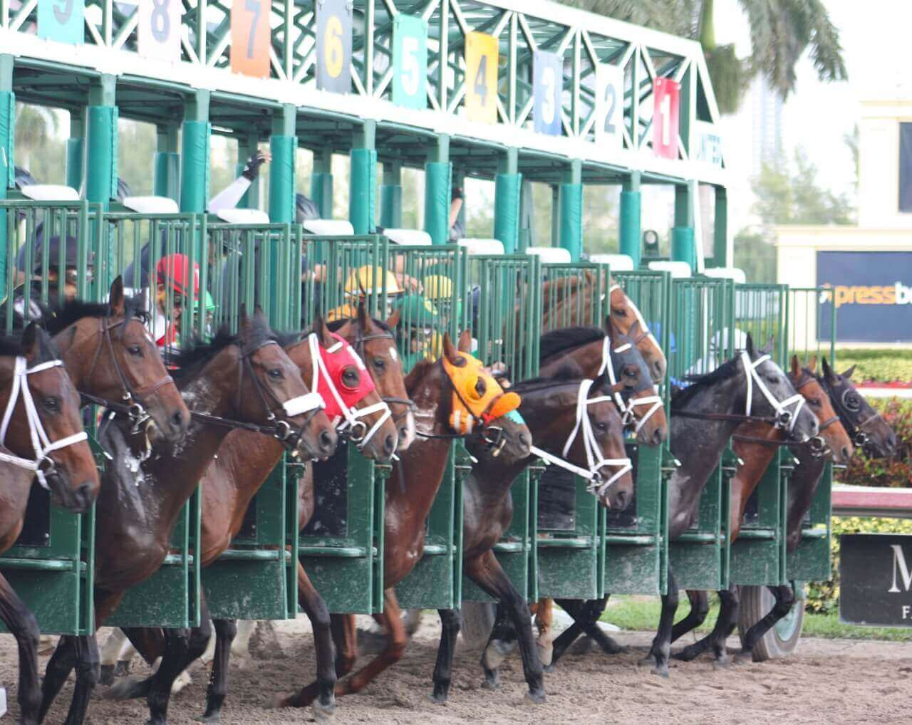 Horse Racing Handicapping Habits To Avoid