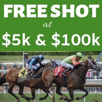 Free Shot at horse racing handicapping