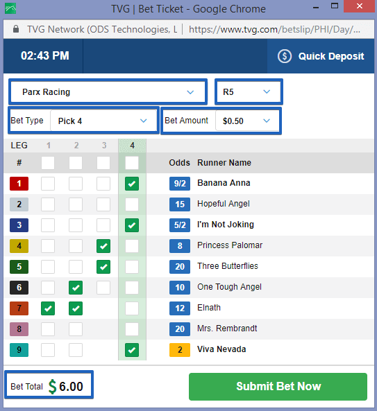 Horse Racing Pick 4 Ticket