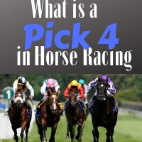 What is a 4 Wager in Horse Racing