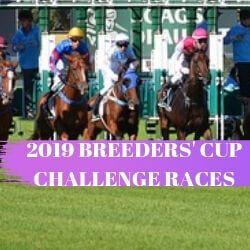 2019 Breeders Cup Challenge Races Include 86 Races In 11