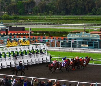 Racing at Santa Anita Horse that Died