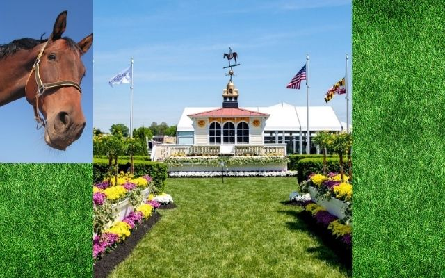 2020 Preakness Stakes
