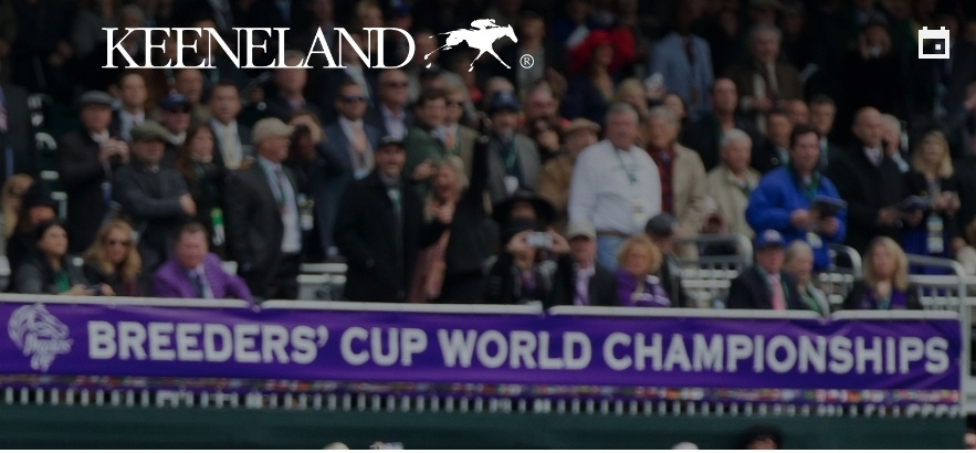 2020 Breeders Cup Contenders - Keeneland